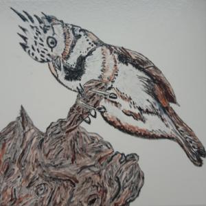Tegel met vogel
